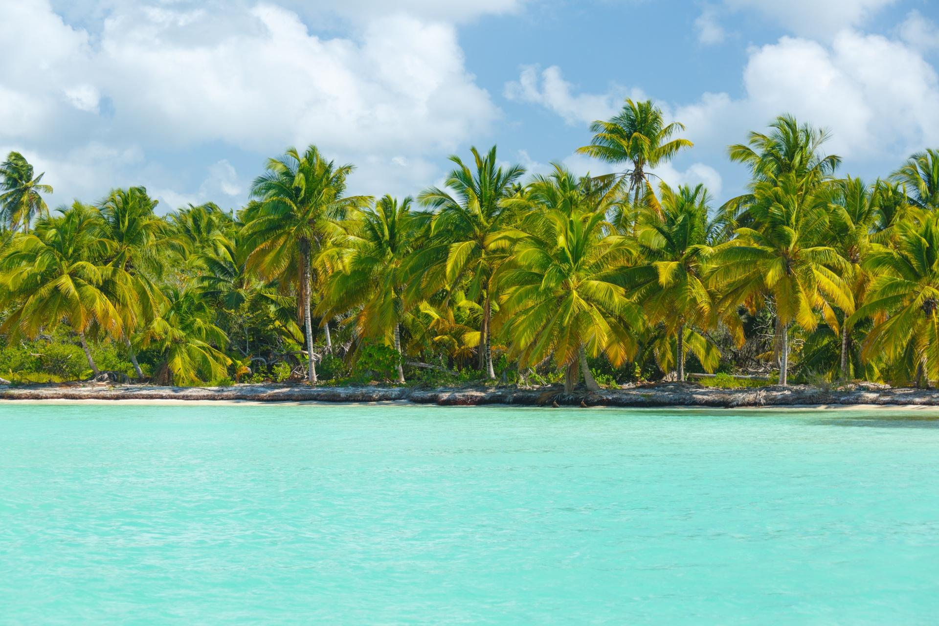 Saona – czy już jestem w raju?