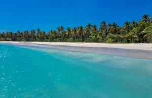 Playa Rincon - jedna z najpiękniejszych plaż Dominikany