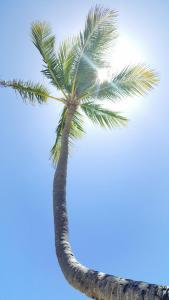 Pogoda na Playa Blanca