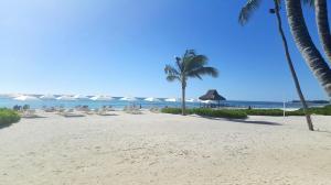 plaża hotelu Westin, na której nigdy nie ma tłumów ani sprzedawców plażowych