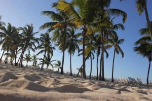 Plaża na wyspie Bacardi Dominikana