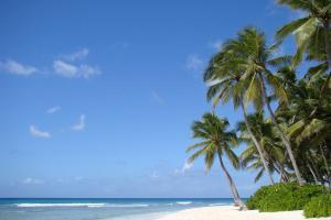 plaża na wyspie Saona