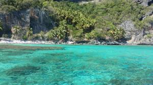 rafa koralowa w okolicach Playa Fronton