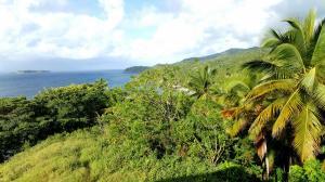 widok na Cayo Levantado z Punta Balandra