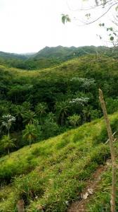 wzgórza wokół wodospadu El Limon