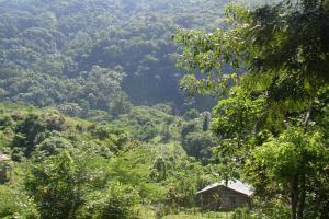 zielone wzgórza dominikańskiej prowincji